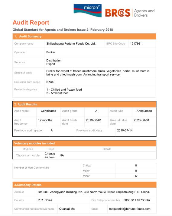 BRC Audit Report